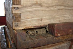 Bees propolize their entrances to keep out intruders and keep the interior warm in winter.