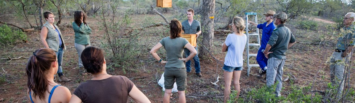 Beehives were introduced to protect Marula trees