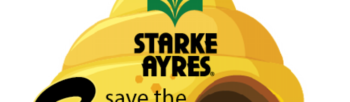 Starke Ayres spring news